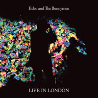 Echo & The Bunnymen - Live in London 2014