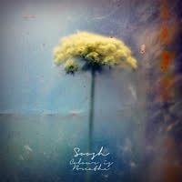 Soosh - Colour is Breathe
