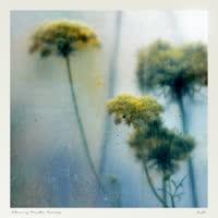 Soosh - Colour is Breathe Remixes