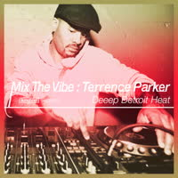 Various Artists - Mix The Vibe: Terrence Parker - Deeep Detroit Heat