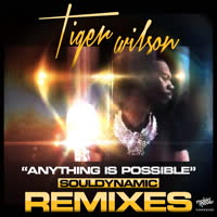 Tiger Wilson - Anything Is Possible (Souldynamic Remixes)