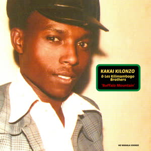 Kakai Kilonzo & Les Kilimambogo Brothers - Buffalo Mountain
