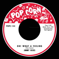 Various Artists - What a Feeling