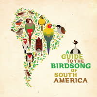 Various Artists - A Guide To The Birdsong Of South America