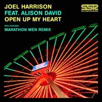 Joel Harrison - Open Up My Heart