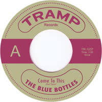 The Blue Bottles - Come to This